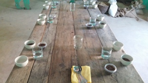 Cupping Haitian coffees with the farmers that cultivated them.