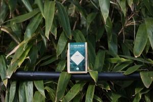 Organics-Coffee-Rwanda-Vert-6