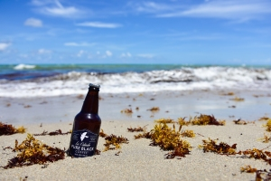PureBlack-Beach-1