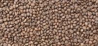beans-3-2