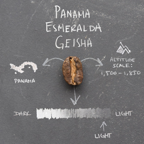 Bean_Variety_Infographics_0001_Panama Esmeralda Geisha