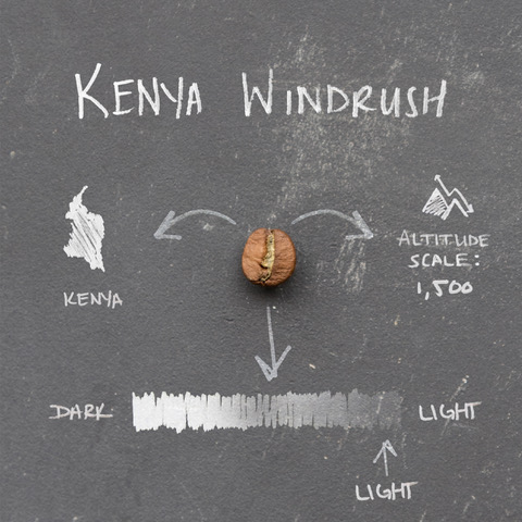 Bean_Variety_Infographics_0003_Kenya Windrush
